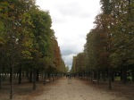 Signs of Fall along the tree lined pathways in Jardin de la Tullierias