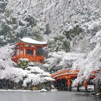 Travel: Japan's Most Beautiful Places