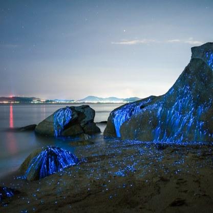 okayama-bioluminescent-rocks-japan-GettyImages-584769664