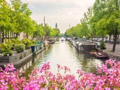 Amsterdam canal cruise was the best and most peaceful way to see this bustling city