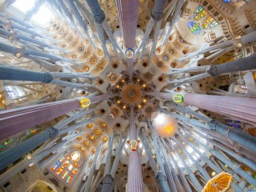 Look up in Barcelona Sagrada Family Ceiling