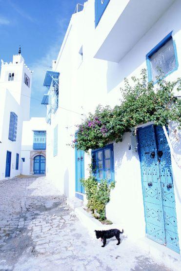 sidi-bou-said-tunisia