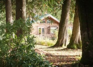 squares-cabins