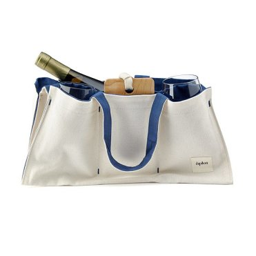coolest picnic bag